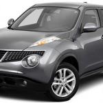 Документы Nissan Juke 2011 (Серый)