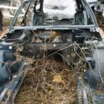 Кузов BMW 5 E34